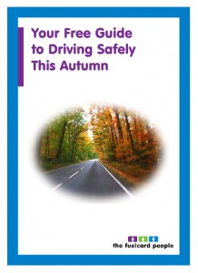 free-autumn-driving-guide-download