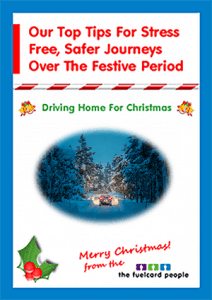 free-guide-to-driving-over-christmas-download